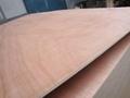 膠合板多層板楊木板桃花芯板 2