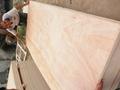 供应优质胶合板包装板托盘板 3