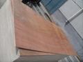 供应杨木红面15mm包装板胶合板托盘板 3