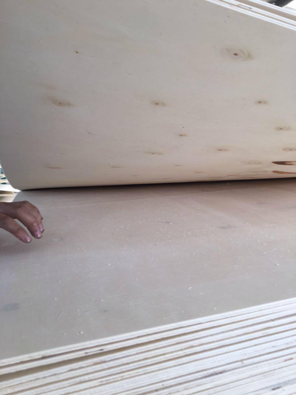 供应一次成型胶合板多层板包装箱板 2