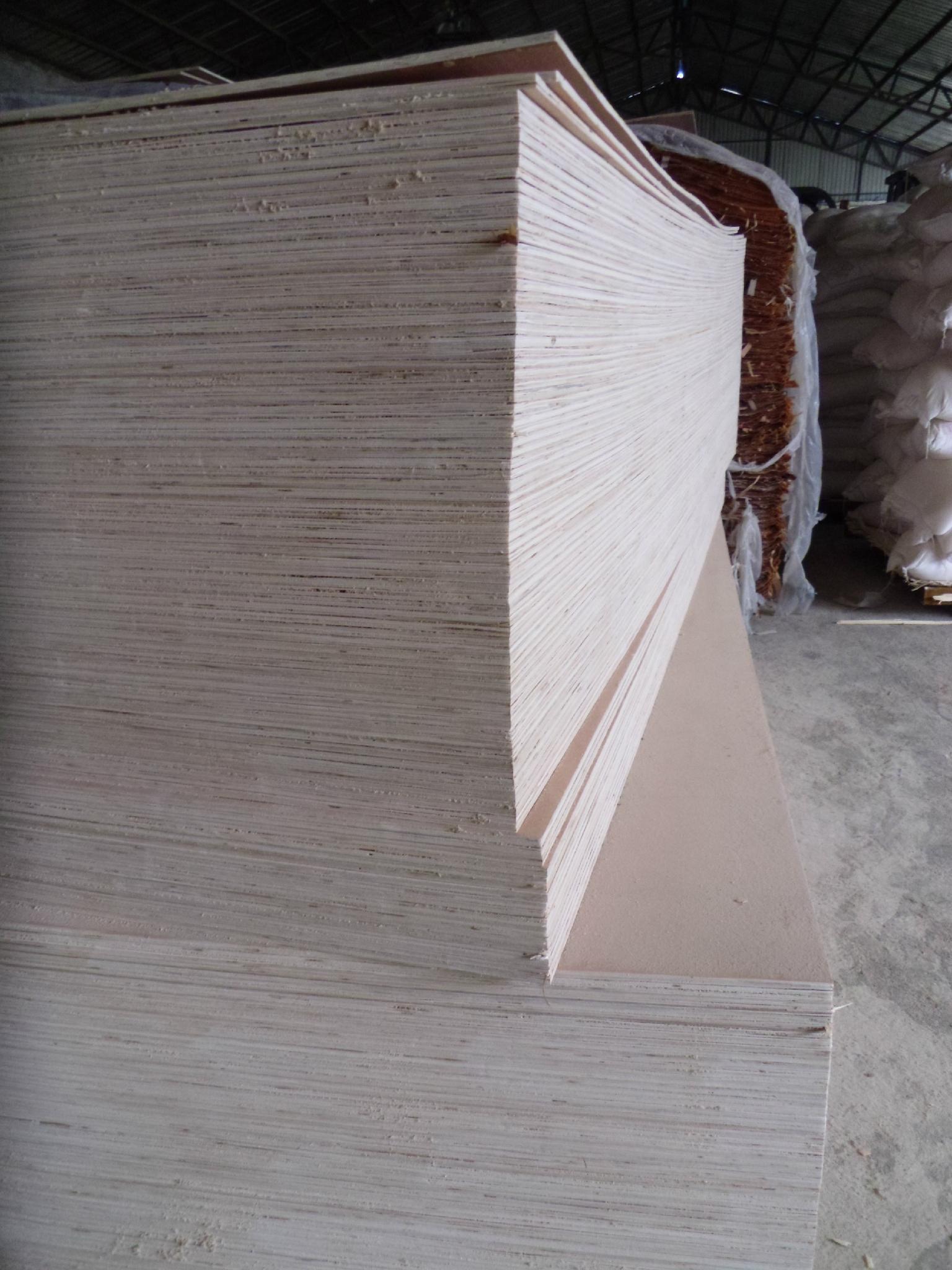 厂家直销15mm整芯胶合板多层板包装板 4