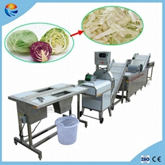 Automatic Cabbage Lettuce Vegetable Washing Cutting Dewateing Machine