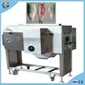 Automatic Mullet Catfish Tilapia Fish