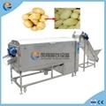Industrial Potato Taro Guava Carrot Taro
