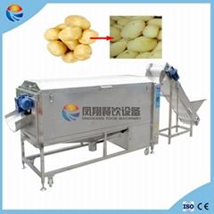 Industrial Potato Taro Guava Carrot Taro Onion Washing Peeling Machine