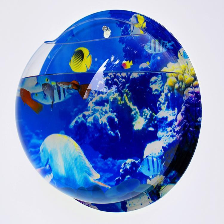 Wall Mount Acrylic Fish Tank 4