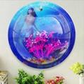 Wall Mount Acrylic Fish Tank 5