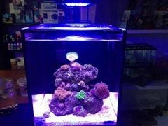 Saltwater Coral 18 Watt Led Aquarium Light