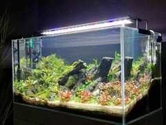 54 Watt Aquarium LED Lighting System For Both Freshwater And Saltwater Tanks