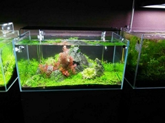 LED Aquarium Light Fish Tank Hood Marine Aquatic Pets Plants Blue White Lighting