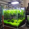 Aquarium Aqua LED Light Lamp Sea Marine