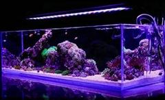 High Power LED Aquarium Light Full Spectrum Lights Fish Tank Marine Reef Coral