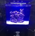 AquaLighter Marine Aquarium LED Light 8300K For Saltwater Tank 2
