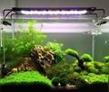 AquaLighter Marine Aquarium LED Light 8300K For Saltwater Tank 4