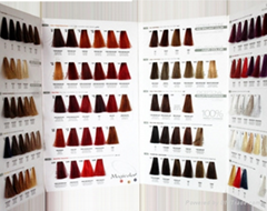 Three Folded Hair Color Chart for Hair Cream Dye