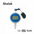 RS485 digital precision pressure gauge