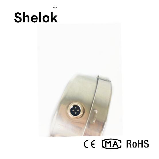 RS485 digital precision pressure gauge 2