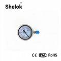 Stainless steel hydraulic capsule oil pressure gauge 2