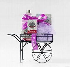 wire case bath gift set