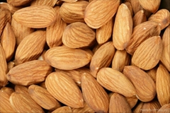 Good quality raw almonds in China.