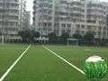 高密度人工草坪 荷兰赛尔隆进口人造草 超耐损人造草皮 1