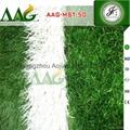 高密度人工草坪 荷兰赛尔隆进口人造草 超耐损人造草皮 3