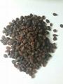 sun dried raisins 2