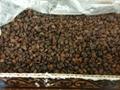 sun dried raisins 3