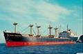 中国到新加坡海运到门