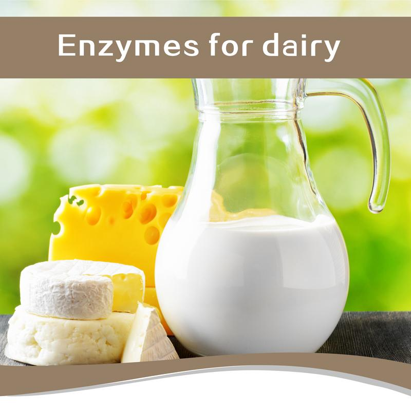 Transglutaminase Microbial for Dairy Stabilizer Flour Improver 1