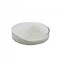 乳糖酶 DS100 1