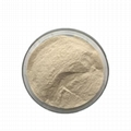Fungal Amylase (alpha) Enzyme for Dough Bread Improver 4