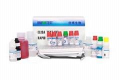 Bisphenol A (BPA) ELISA Test Kit