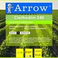 Pesticide, Herbicide Clethodim