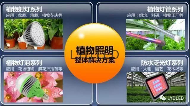樂億迪定製LED植物生燈燈 1