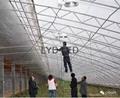 樂億迪定製LED植物生燈燈 4