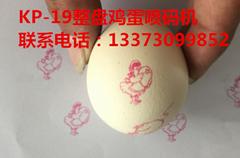 全国供应六头鸡蛋喷码机