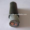 2芯低压电力电缆YJV32 2