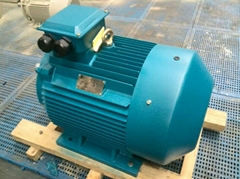 Three-phase Squirrel Cage Ac Three Phase Induction Motor 160kw