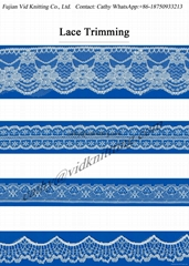 Polyester / Nylon Lace Band for Garment Decoration