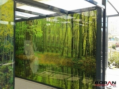 Glass Printing Services
