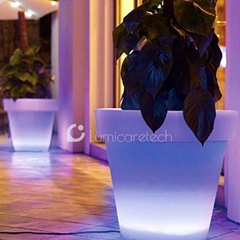 Illuminated LED Flower Pot