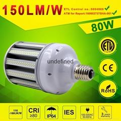 80watt LED Post Top Retrofit Light LED Retrofit Kits for Post Top or Bollard Lig