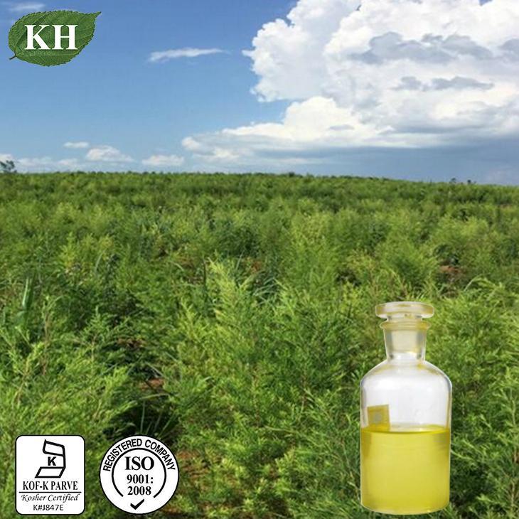 Tea Tree Oil 41% Terpinen-4-Ol 1