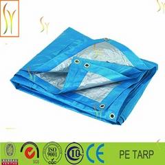 Waterproof Tarp Tarpaulin Tent Shelter,car tarpaulin