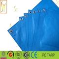 Waterproof Tarp Tarpaulin Tent Shelter,car tarpaulin 4