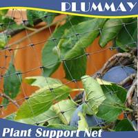 100% virgin HDPE plant support netting green agriculture climbing net