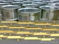 純天然提取桉葉油GMP 標準