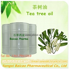 厂家生产单方精油互叶白千层油 茶树油 日用化妆品原料供应