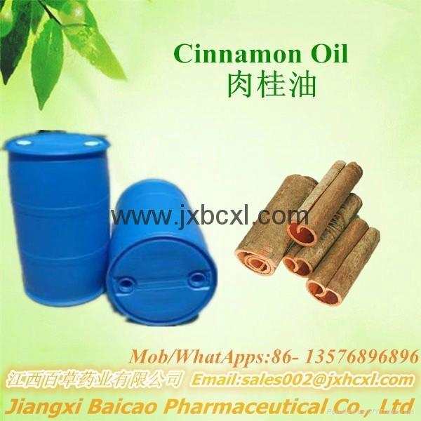 天然植物精油 肉桂油 GMP 标准 1